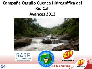 Campaña Orgullo Cuenca Hidrográfica del Rio Cali Avances 2013