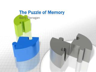 The Puzzle of Memory