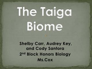 The Taiga Biome