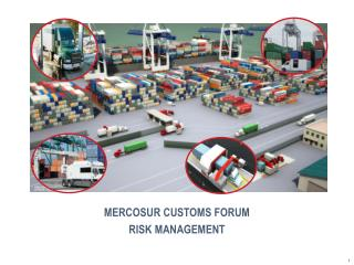 MERCOSUR CUSTOMS FORUM RISK MANAGEMENT