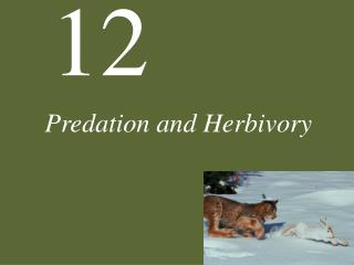 Predation and Herbivory