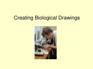 Creating Biological Drawings