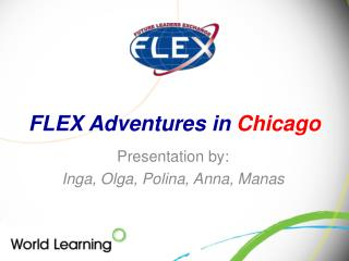 FLEX Adventures in  Chicago