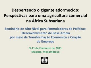 Despertando o gigante adormecido: Perspectivas para uma agricultura comercial na África Subsariana