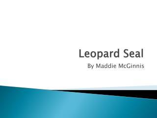 Leopard  S eal