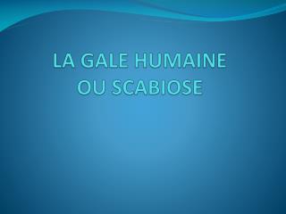 LA GALE HUMAINE OU SCABIOSE