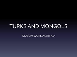 TURKS AND MONGOLS