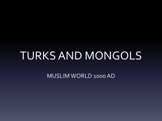 TURKS AND MONGOLS