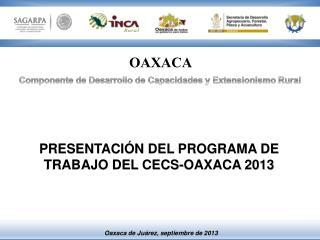 PRESENTACIÓN DEL PROGRAMA DE TRABAJO DEL CECS-OAXACA 2013