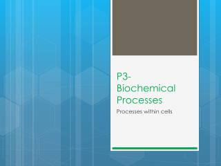 P3- Biochemical Processes