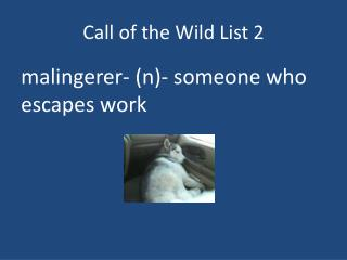 Call  o f the Wild List 2