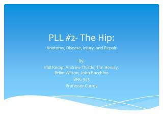 PLL #2- The Hip: