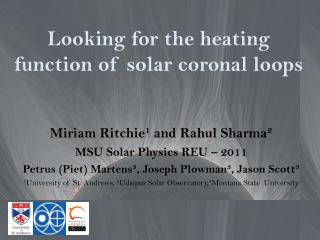 Looking for the heating function of solar coronal loops