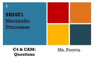 SBI4U1 Metabolic Processes