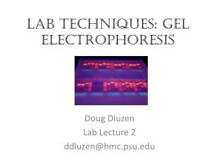 Lab Techniques: Gel electrophoresis