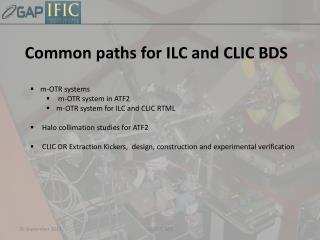 Common paths for  ILC and  CLIC BDS