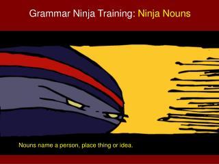 Grammar Ninja Training:  Ninja Nouns