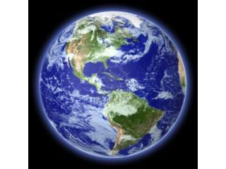 I  biomi terrestri sono identificati dalla loro flora  e   fauna . .