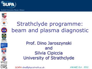 Strathclyde programme: beam and plasma diagnostic