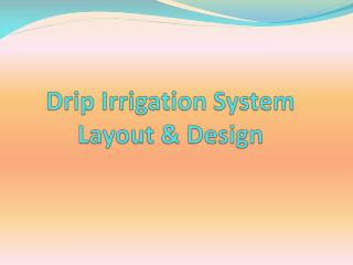 Drip Irrigation System                       Layout & Design