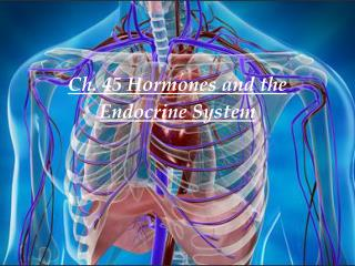 Ch. 45 Hormones and the Endocrine System