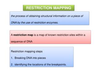 A� restriction map �is a map of known�restriction sites�within a sequence of�DNA
