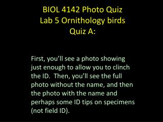 BIOL 4142 Photo Quiz Lab  5  Ornithology  birds  Quiz A: