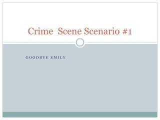 Crime  Scene Scenario #1