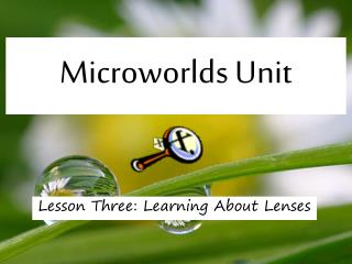 Microworlds Unit