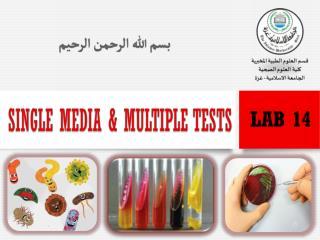 Single Media & Multiple Tests