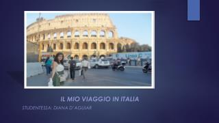 Il  mio viaggio  in  italia Studentessa : Diana  d'aguiar