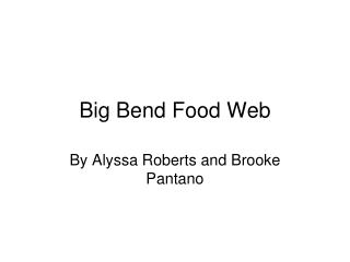 Big Bend Food Web