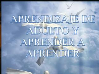 APRENDIZAJE DE ADULTO Y APRENDER A APRENDER