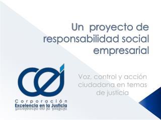Un  proyecto de responsabilidad social empresarial