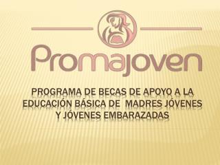 Programa de becas de apoyo a la educación básica de  madres jóvenes y jóvenes embarazadas