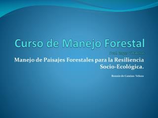 Curso de Manejo Forestal Prof. Roger Villalobos