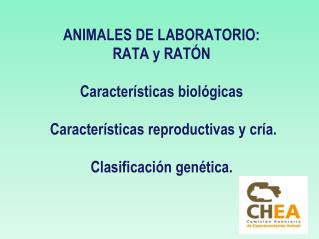 Animal de laboratorio o tradicionales