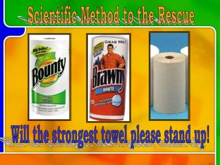 Paper Towel Lab