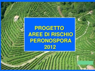 PROGETTO   AREE  DI  RISCHIO PERONOSPORA 2012