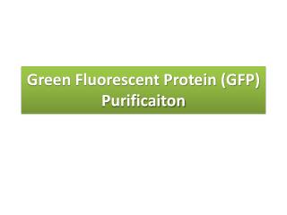 Green Fluorescent Protein (GFP)  Purificaiton