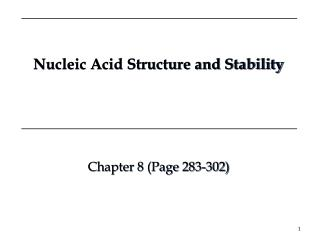 Nucleic Acid Structure and Stability