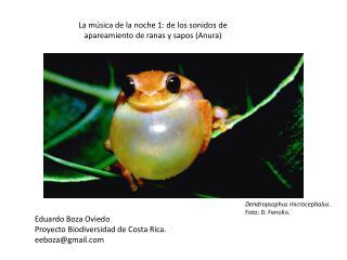 La música de la noche 1: de los sonidos de apareamiento de ranas y sapos (Anura)