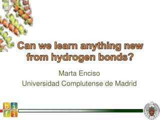 Can  we learn anything new  from  hydrogen bonds?