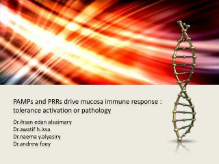 PAMPs and PRRs drive mucosa immune response :  tolerance activation or pathology