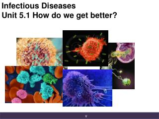 Infectious Diseases Unit 5.1 How do we get better?