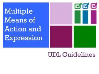UDL Guidelines
