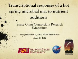 Transcriptional responses of a hot spring microbial mat to nutrient additions