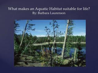 What makes an Aquatic Habitat suitable for life? By: Barbara  Laurenson