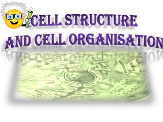 Cell Structure  and Cell Organisation