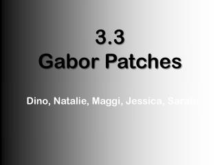 3.3 Gabor Patches